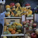 Fiera San Luca frutta autunnale