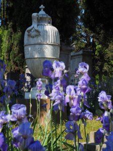 cimitero degli inglesi interno, Firenze