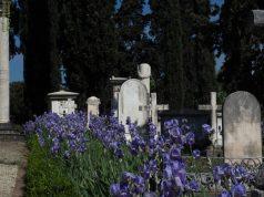 cimitero degli inglesi panoramica delle tombe, Firenze