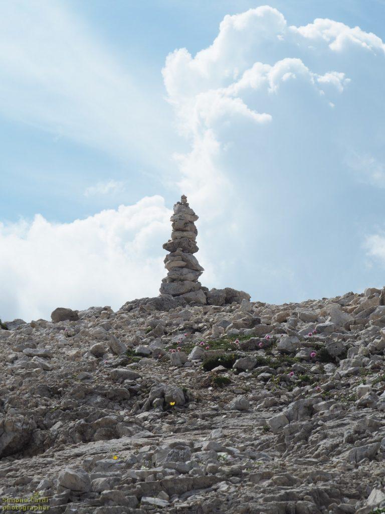 Pale di San Martino - composizione di sassi