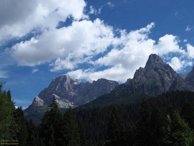 Pale di San Martino panorama