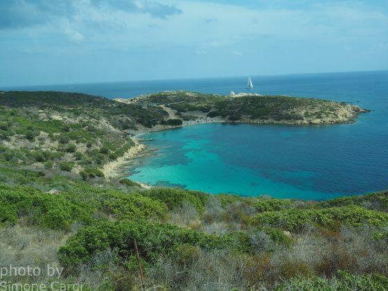 baia Asinara zona Cala d'Oliva