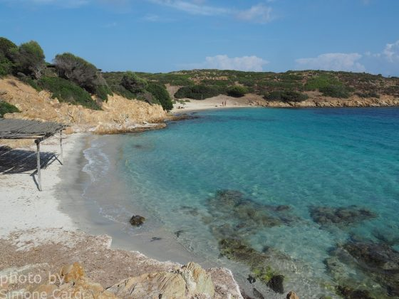 cala ponzesi Asinara