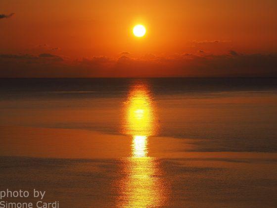 alba Asinara